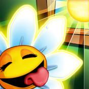 照亮花朵 Light The Flower