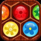 Flower Board - A fun & addictive line puzzle game (brain relaxing games)