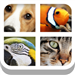 Close Up Animals - Guess the Animal Pics Quiz Game
